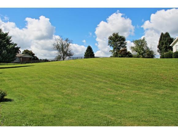 TBD Persimmon Lane, Jonesborough, TN 37659 (MLS #396742) :: Highlands Realty, Inc.