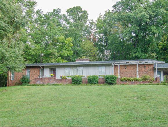 614 Woodland Dr, Elizabethton, TN 37643 (MLS #397166) :: Highlands Realty, Inc.