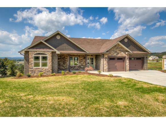 803 Hales Chapel Rd, Gray, TN 37615 (MLS #397178) :: Conservus Real Estate Group