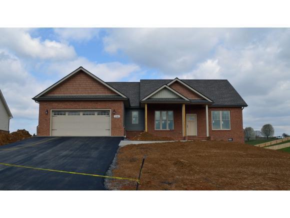 1062 Peaceful Drive, Jonesborough, TN 37659 (MLS #397581) :: Highlands Realty, Inc.