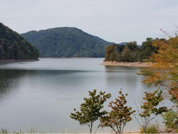 none Walnut Bend Drive Subdivision, Whitesburg, TN 37891 (MLS #398164) :: Highlands Realty, Inc.