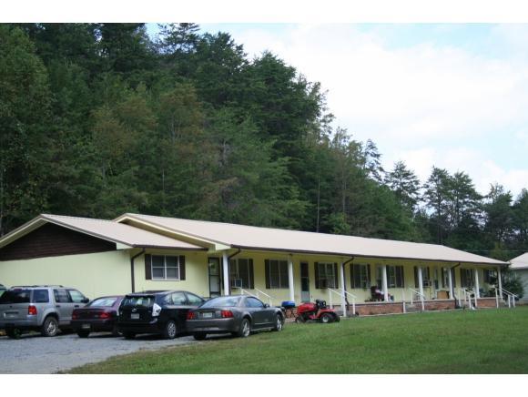 110 Hardin Lane, Unicoi, TN 37692 (MLS #399027) :: Griffin Home Group