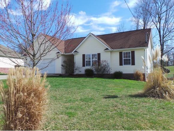 1126 American Way, Jonesborough, TN 37659 (MLS #400080) :: Highlands Realty, Inc.