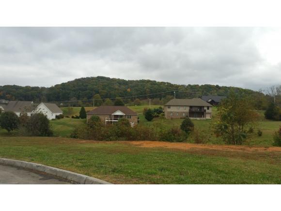 238 Sunset Ridge Blvd, Gray, TN 37615 (MLS #401120) :: Conservus Real Estate Group