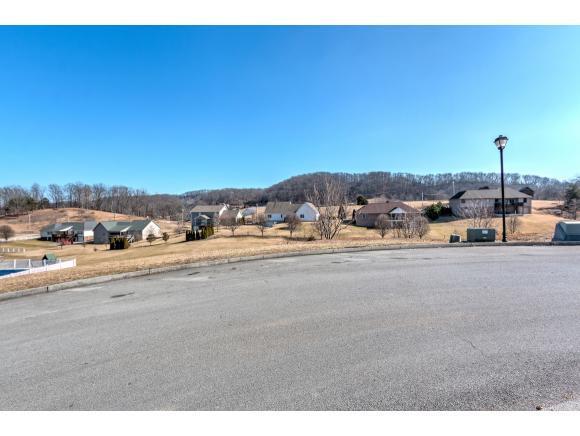 10 Sunset Meadows Ct, Gray, TN 37615 (MLS #401123) :: Bridge Pointe Real Estate