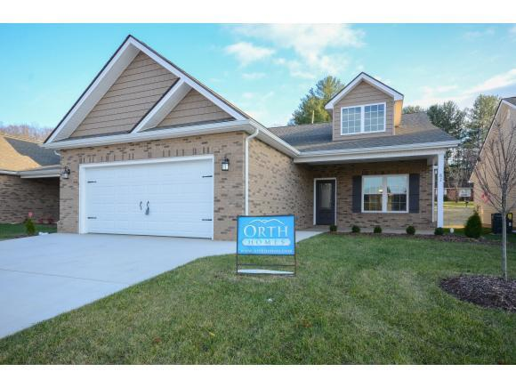 87 Poinciana Place, Johnson City, TN 37604 (MLS #401248) :: Conservus Real Estate Group