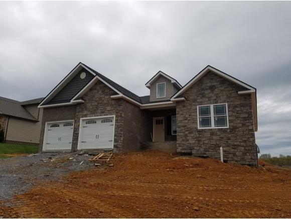 3136 London Rd, Kingsport, TN 37664 (MLS #401264) :: Conservus Real Estate Group
