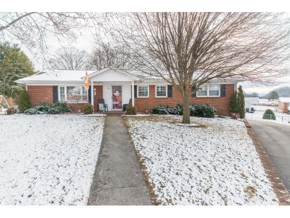 60 Moneta Circle, Bristol, VA 24201 (MLS #401349) :: Conservus Real Estate Group