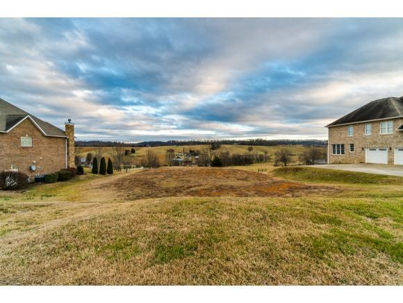 141 Laurel Ridge Drive, Jonesborough, TN 37659 (MLS #402233) :: Conservus Real Estate Group