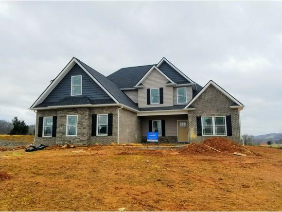 1310 Peaceful Drive, Jonesborough, TN 37659 (MLS #402435) :: Conservus Real Estate Group