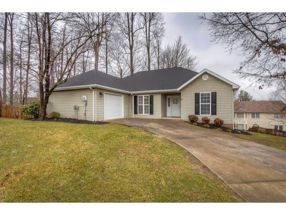 8 Larchmont Ln, Johnson City, TN 37604 (MLS #402538) :: Conservus Real Estate Group