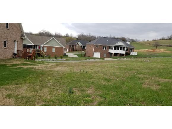 302 Harbor Approach, Johnson City, TN 37601 (MLS #402870) :: Highlands Realty, Inc.
