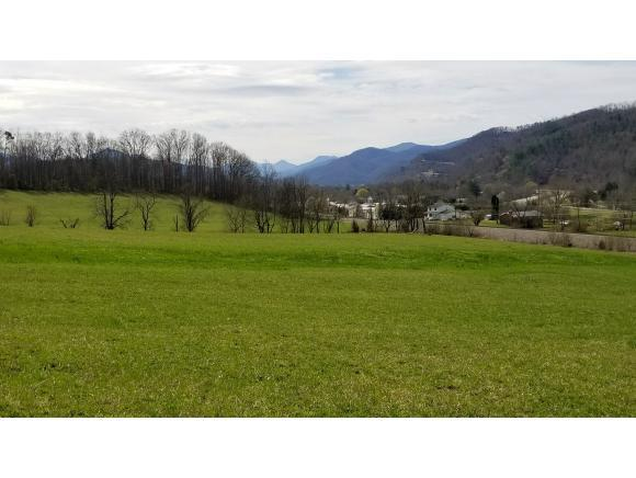 TBD Zane Whitson Drive, Erwin, TN 37650 (MLS #403220) :: Griffin Home Group