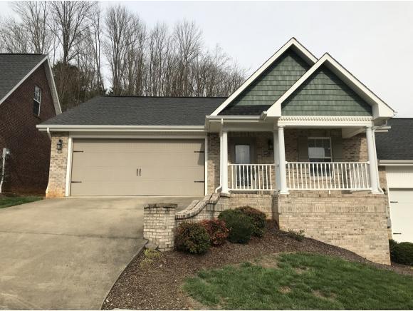 22 Hiddenbrook Lane -, Gray, TN 37615 (MLS #404253) :: Griffin Home Group