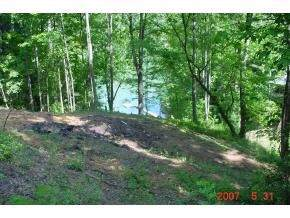 Lot 23 Pine Point Circle, Butler, TN 37640 (MLS #404460) :: Conservus Real Estate Group