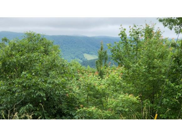 Lot. 55 Oneida Peak Rd., Tazewell, VA 24651 (MLS #404486) :: Highlands Realty, Inc.