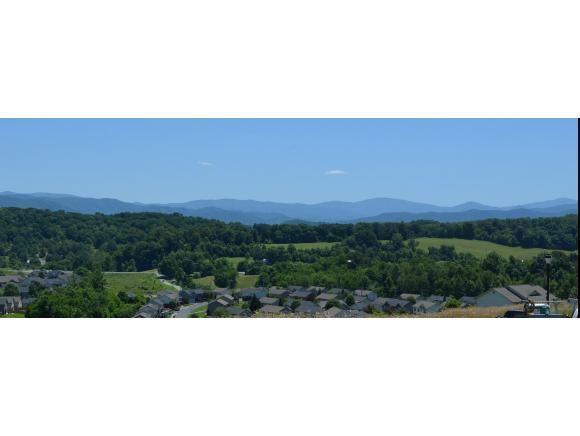 665 Birds Eye View, Jonesborough, TN 37659 (MLS #405613) :: Highlands Realty, Inc.