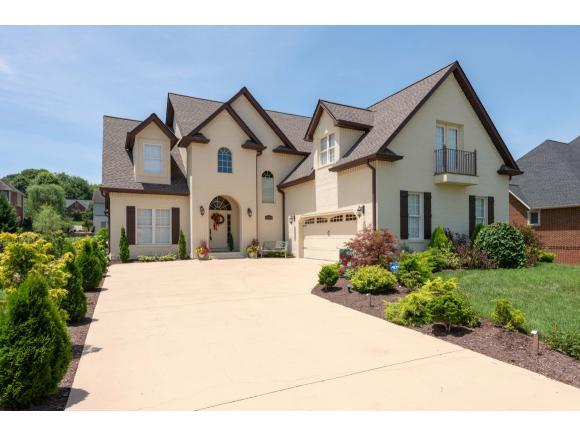 1152 Cattail Point, Johnson City, TN 37601 (MLS #407585) :: Highlands Realty, Inc.