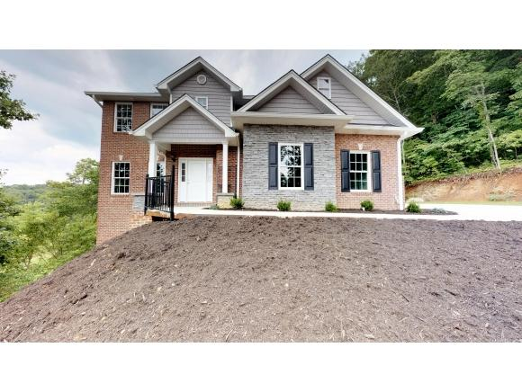 3817 Woodleaf Lane, Kingsport, TN 37663 (MLS #409106) :: Griffin Home Group