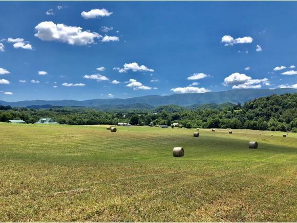 TBD Bullock Hollow Road Lot #1, Bristol, TN 37620 (MLS #409440) :: Highlands Realty, Inc.