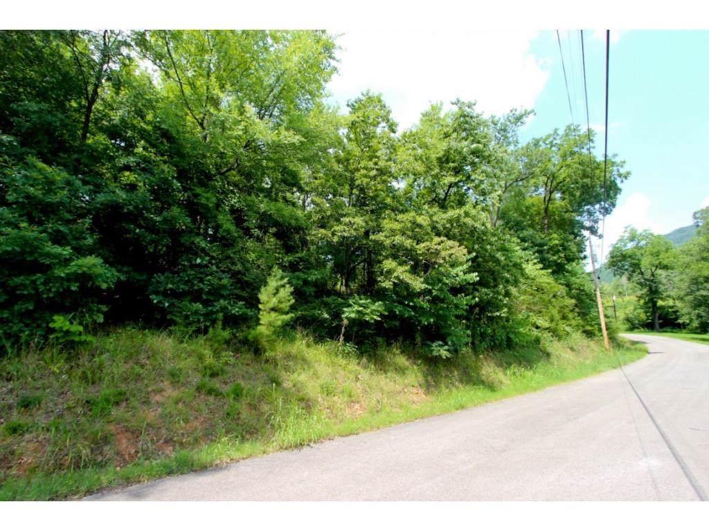 LOT 1 Tomahawk Drive - Photo 1