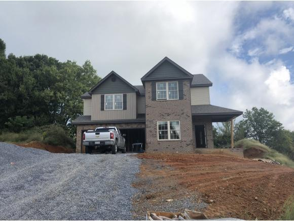 1087 Savin Falls, Gray, TN 37615 (MLS #410333) :: Griffin Home Group