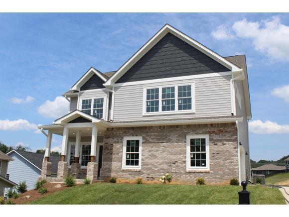 2596 Bridgeforth Crossing, Kingsport, TN 37664 (MLS #410373) :: Conservus Real Estate Group