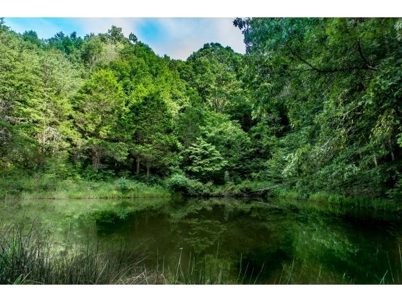 TBD Snake Hollow, Greeneville, TN 37743 (MLS #410794) :: Highlands Realty, Inc.