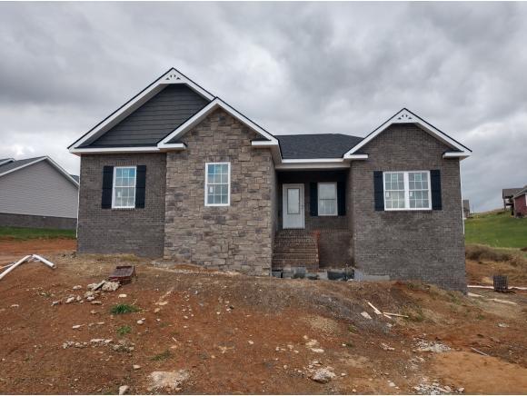 1359 Savin Falls, Gray, TN 37615 (MLS #410937) :: Griffin Home Group