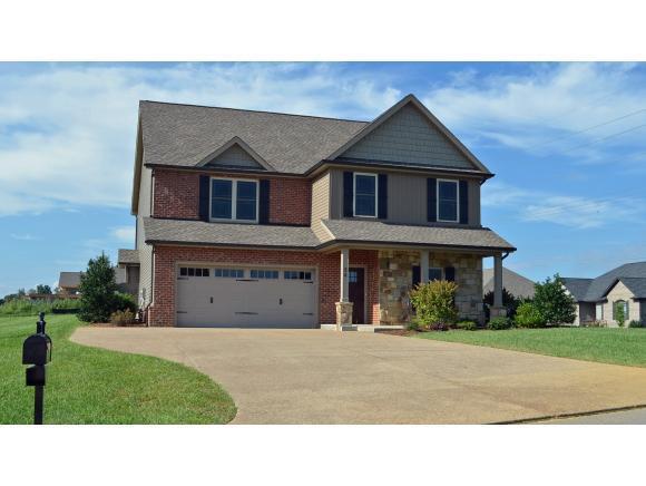 24 Trotter Lane, Gray, TN 37615 (MLS #411416) :: Highlands Realty, Inc.