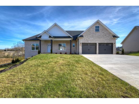 1348 Savin Falls, Gray, TN 37615 (MLS #411510) :: Griffin Home Group