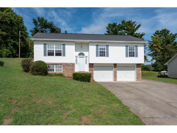 1036 Morrell Court, Kingsport, TN 37664 (MLS #411779) :: Griffin Home Group