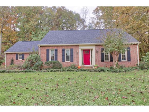 828 Ridgefields Dr, Kingsport, TN 37660 (MLS #412377) :: Conservus Real Estate Group