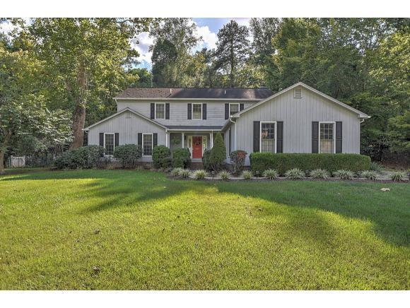1229 Radcliffe Avenue, Kingsport, TN 37664 (MLS #412465) :: Highlands Realty, Inc.