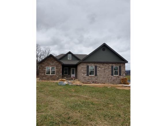 1328 Peaceful Drive, Jonesborough, TN 37659 (MLS #412530) :: Griffin Home Group