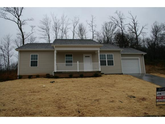 2322 Serenity Court, Kingsport, TN 37665 (MLS #412814) :: Conservus Real Estate Group