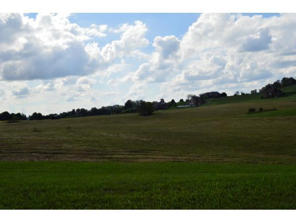 Lot 2 Waterstone Cr, Greeneville, TN 37745 (MLS #413339) :: Griffin Home Group