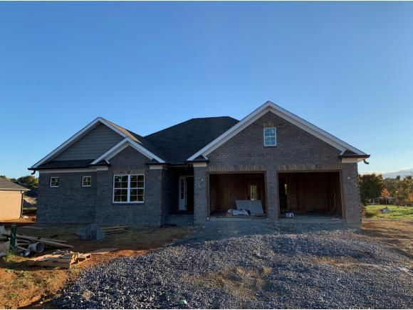 5010 Hester Court, Piney Flats, TN 37686 (MLS #413510) :: Griffin Home Group