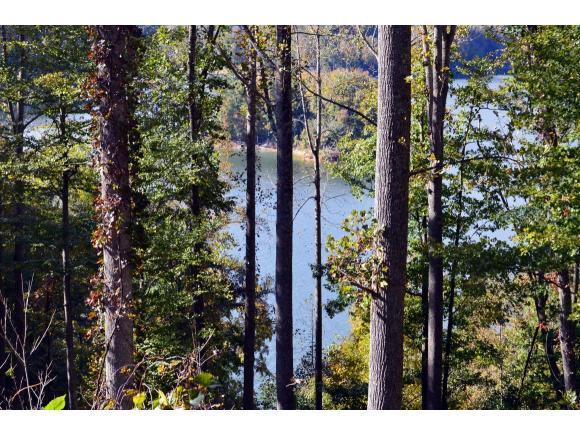 Lot 22 Bluestone Drive, Butler, TN 37640 (MLS #414056) :: Conservus Real Estate Group