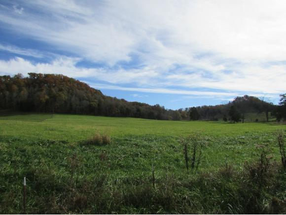 TBD Stanley Valley Road, Church Hill, TN 37642 (MLS #414572) :: Griffin Home Group