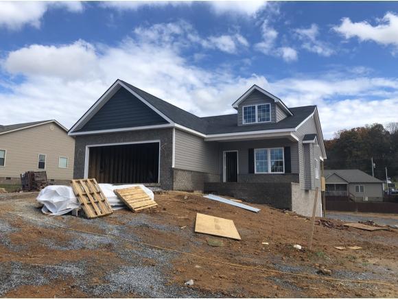 800 Ashley Meadows, Jonesborough, TN 37659 (MLS #414645) :: Conservus Real Estate Group