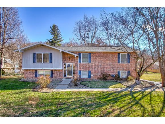 1506 Sun Valley Dr, Greeneville, TN 37745 (MLS #416346) :: Griffin Home Group