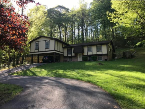 1900 Valley View Dr, Big Stone Gap, VA 24219 (MLS #416865) :: Highlands Realty, Inc.