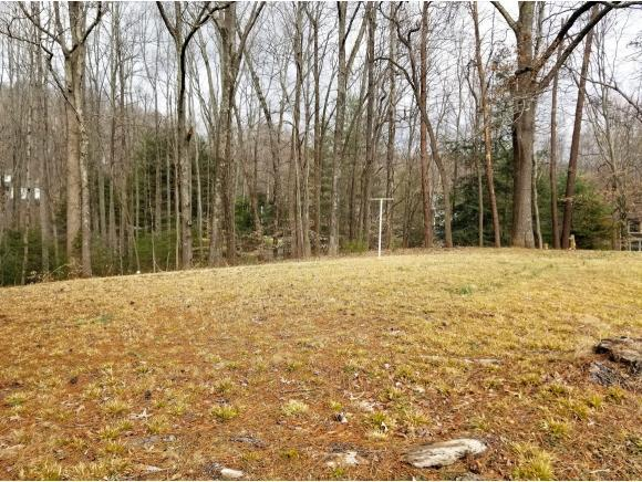 1618 Woodridge Drive, Johnson City, TN 37604 (MLS #417354) :: Conservus Real Estate Group