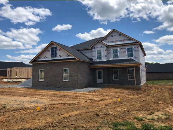 5153 Hester Ct, Piney Flats, TN 37686 (MLS #418839) :: Highlands Realty, Inc.