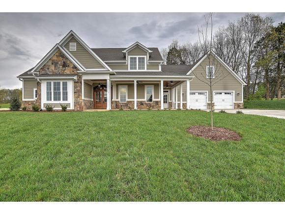 105 Harbor View Drive, Blountville, TN 37617 (MLS #419633) :: Bridge Pointe Real Estate