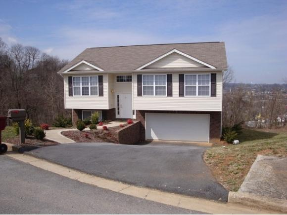 42 Taylor Ridge Court, Johnson City, TN 37601 (MLS #419870) :: Highlands Realty, Inc.