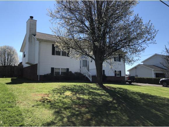 1155 First Street, Gray, TN 37615 (MLS #420045) :: Bridge Pointe Real Estate