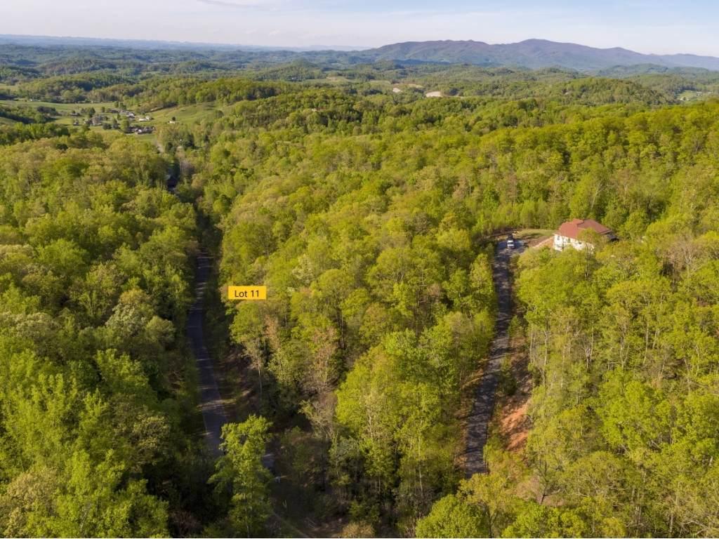 Lot 11 Pfeiffer Ridge Road - Photo 1