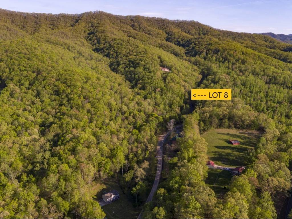 Lot 8 Pfeiffer Ridge Road - Photo 1